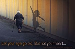 Heart - old